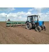 Предоставляем услуги по посеву зерновых