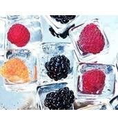 Перевезення замороженої продукції: вищий рівень доставки