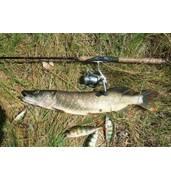 Купити рибальські снасті можна у нас