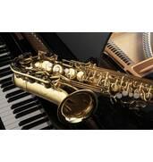 Продаж музичних інструментів в Україні: великий вибір, вигідні ціни