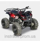 Купить квадроцикл, стоимость 20475.00 грн.