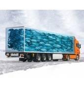 Заказывайте рефрижераторные перевозки по всей Украине