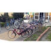 Купить велосипеды оптом