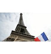 Продвижение нового продукта на рынок Франции