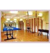 Поспішайте купити гімнастичне обладнання від виробника