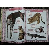 Російсько-англійська енциклопедія замовити книгу поштою