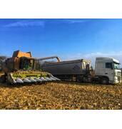 Услуги зерновоза цена самая доступная на украинском рынке!
