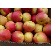 Айдаред яблука - смачний сорт яблук!