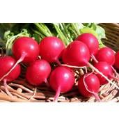 """Купить семена овощей на водорастворимой ленте предлагаем в компании """"Солнце Сад""""."""