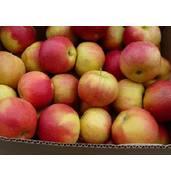 У продажі Айдаред яблука!