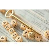 Предоставление бухгалтерских и аудиторских услуг