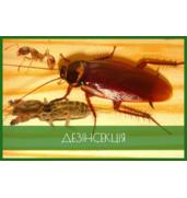 """Профессиональное уничтожение насекомых поможет осуществить ЧП """"Крес""""."""