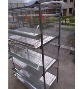 Спеціальні клітки для бройлерів від виробника
