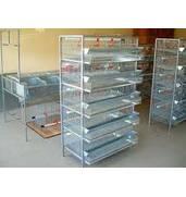 Купляйте клітки для перепелів за доступними цінами