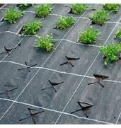 Агротканина для мульчування- ефективна річ для фермерів та любителівландшафтного дизайну