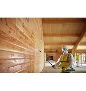 Профессиональная борьба с вредителями древесины возможна при доступен счет