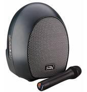 Акційна ціна на компактну акустичну систему SOUNDKING SKWH065U