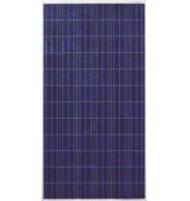 Якісні полікристалічні батареї Risen в асортименті
