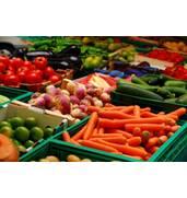 Семена овощей оптом и в розницу