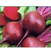 Проверенные семена овощей: свеклы столовой