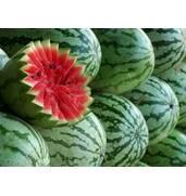 Семена овощей и ягод: арбузов Астраханський, Огонек, Княжич, Красень.