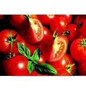 Большой ассортимент семян овощей: семена помидоров стойких к болезням