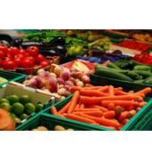 Гарантія якості: насіння овочів капусти, моркви, томатів, огірків