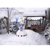 Новий рік біля Миргорода запам'ятається на все життя
