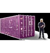Послуги з митного очищення вантажів (Одеса)