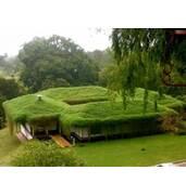 У нас ви можете замовити озеленення похилих покрівель з різним кутом
