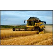 Аграрии рекомендуют. Услуги по уборке урожая от компании Авантаж