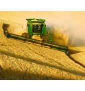 Сезон открыт! Сбор урожая в Украине осуществляют профессионалы