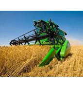 Надаємо послуги зі збирання врожаю зернових