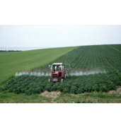 Предлагаем внесение удобрений под картофель