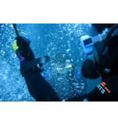 Обстеження підводних переходів трубопроводів фахівцями компанії Сальп