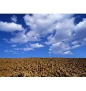 Экспертная оценка земли, земельных участков - Одесса, область