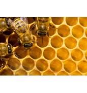 Производство меда и муки