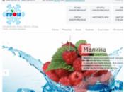 ТОВ Грон - заморожені ягоди, фрукти, заморожені овочі