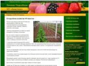 Особисте підсобне господарство Анастюк - саджанці малини, полуниці, винограду, ожини