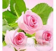 Отдушка Свежесрезанные розы США  50  грамм