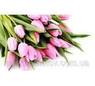 Отдушка Тюльпаны  США  50  грамм