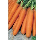Морква Перфекція за 2 г