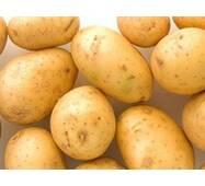 """Картопля сорт """"Рів'єра""""сітка 5кг."""