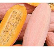 Гарбуз Рожевий банан за 2 г (ЕГР-22)