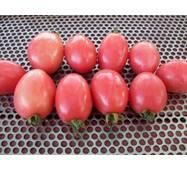 Томат Сливка гигант розовая (ЕТМ-271) по 0,1 г