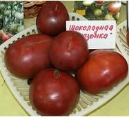 Томат Шоколадная амазонка (ЕТМ-343) за 0,15 г