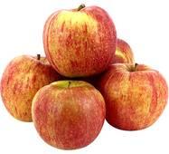 Яблука Джоноголд