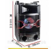 Колонка активна Temeisheng T240