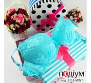 Женский кружевной бюстгальтер с push-up Mint (Mint)