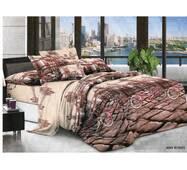 Комплект постельного белья Ранфорс 393